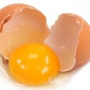 Ordinanza del Comune di Rimini per uova crude
